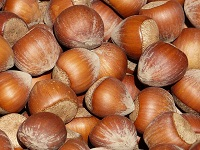 Hazelnuts improve older adults' micronutrient levels, study shows